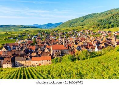 Vista del pueblo y viñedos de Riquewihr en la ruta del vino de Alsacia, Francia