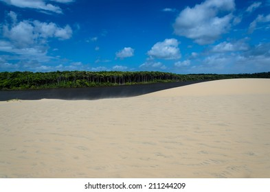 View to river with dune, forest and blue cloudy sky