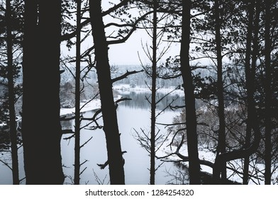 The view of river and its snowy shores through the silhouettes of forest trees