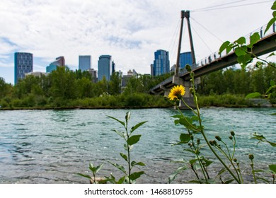 View River in summer Calgary Alberta Canada