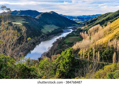 View of the river and the surrounding forest in the Whanganui National Park, North Island of New Zealand