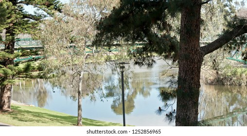 A view of the river torrens in Adelaide