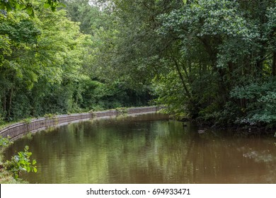 view of the river with trees and bushes.