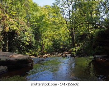 a view of the river and valley at lumb hole valley in woodland at crimsworth dean near pecket well in calderdale west yorkshire