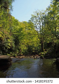 a view of the river and valley at lumb hole in woodland at crimsworth dean near pecket well in calderdale west yorkshire