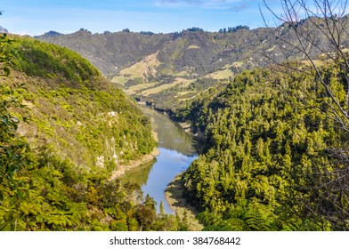 View of the river in the Whanganui National Park, North Island of New Zealand