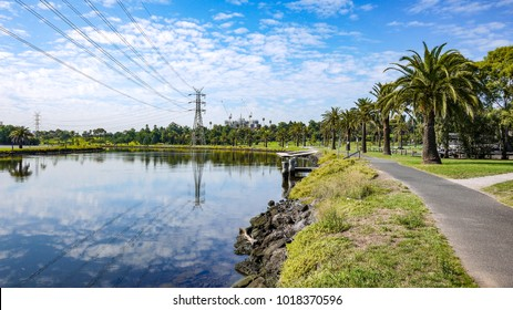 View of riverside pedestrian footpath/bike trails in Footscray Park along the beautiful Maribyrnong River of Melbourne. Palm trees growing along riverbank against blue sky.