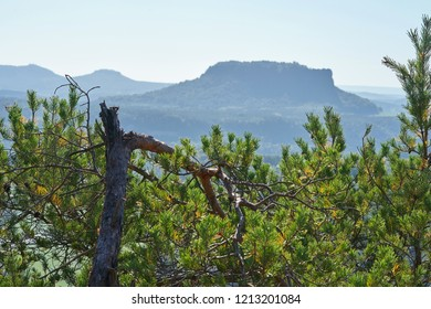 View from the rock formation Bastei in the Elbe Sandstone Mountains on the opposite Lilienstein