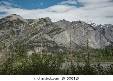 View of the Rocky Mountains from a meadow in Canmore Alberta