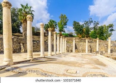 View of the Roman bath house in the ancient city of Bet Shean, now a national park. Northern Israel