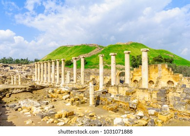 View of the Roman era street in the ancient city of Bet Shean, now a national park. Northern Israel
