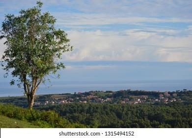 A view of Ruiloba, Cantabria