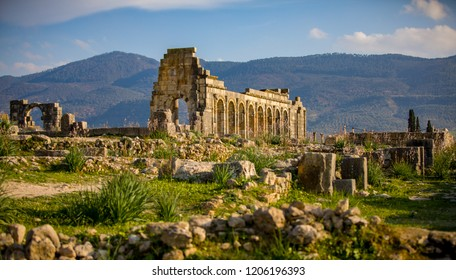 View at ruins of an ancient roman city in Volubilis, Morocco