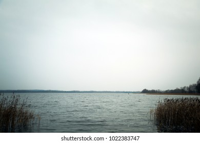 View of a rural lake with reed