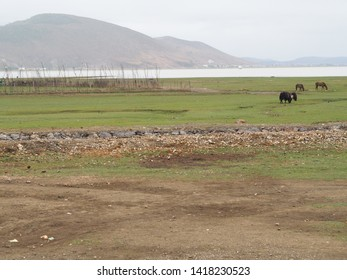 View of rural landscape in China.