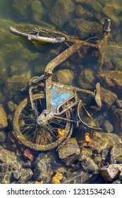 View of a rusty bicycle in the Rhine.