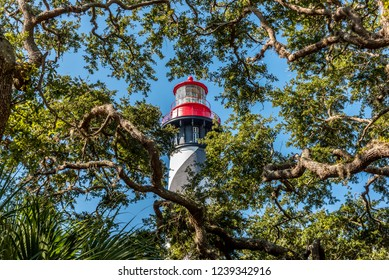 View of Saint Augustine Lighthouse behind trees at Anastasia Island in Florida