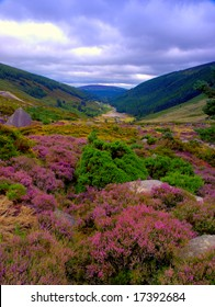 view from Sally Gap,Co.Wicklow, Ireland