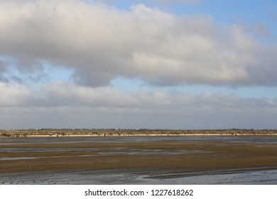 View of Salt cultivation at Aigues-Mortes Salt Marsh, in the salins du midi site, located in Camargue, Gard department, southern France. November, 11, 2018. Flat wetlands, canal and water visible,