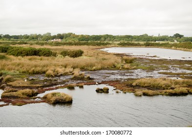 View of the salt marsh beside the Solent at the Keyhaven Nature Reserve, Lymington, Hampshire.