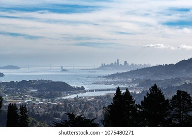 View of San Francisco from the hills of Mill Valley