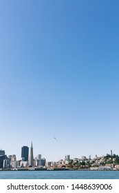 View of San Francisco skyline from on the bay with a seagull flying overhead