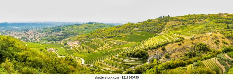 View from San Giorgio in Valpolicella in the province of Verona, Veneto - Italy
