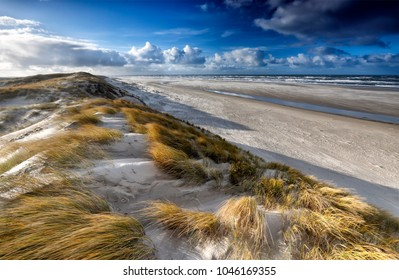 view from sand dune on north sea coast, Texel, Netherlands