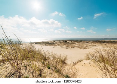 View of the sand dunes in hot weather on a summer sunny day, beautiful blue sky.View of the dunes in Nida, Neringa, Lithuania.