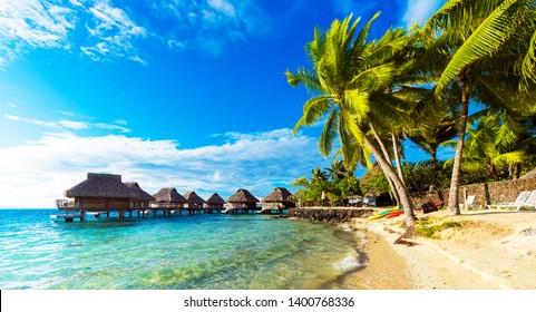 View of the sandy beach with palm trees, Bora Bora, French Polynesia