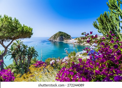 A view of Sant'Angelo in Ischia island in Italy: Tyrrhenian sea, bougainvillea glabra, rocks,  water, umbrella, sand and typical houses in the island in front of Naples, Campania region in a sunny day
