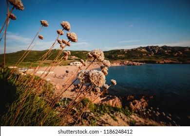 View of Sardinian beach
