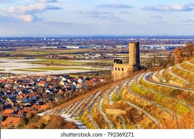 View to the Schriesheim old town and  Mannheim, from Strahlenburg  vineyard mountain, Badische Weinstrasse ( Baden Wine Route ), Baden, Germany. Schriesheim in winter time