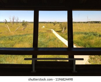 View from the sea eagle bird hide in the Oostvaardersplassen in Flevoland Zeearend hut on a summer day, in The Netherlands