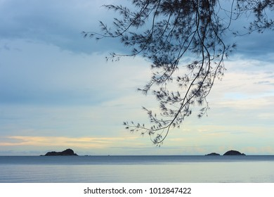 View of the sea and mountains from the shore with a branch of pine, Thailand