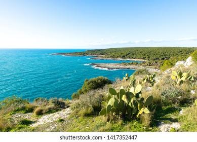 view of the sea from porto selvaggio near gallipoli, salento, the eastern part of apulia, italy