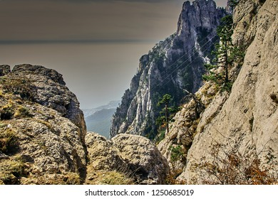 View of the sea through the rocks from the highest mountain of Crimea (Ai-Petri mountains). Evergreen pines grow on the rocks. Sea in a haze. The sky with white clouds. Crimean mountain landscape