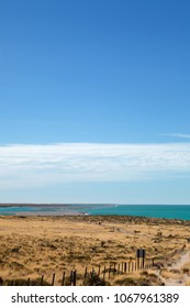 View of the semi-arid barren desret land (with the ocean in the background) of the Valdes Peninsula nature reserve close to Puerto Madryn, Patagonia, Argentina.