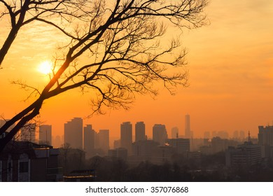 View of Seoul skyline from a hill in Itaewon district. Tree silhouette in orange sunset