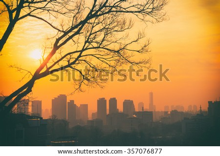 View of Seoul skyline from a hill in Itaewon district. Tree silhouette in orange sunset. Old photo style