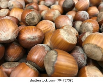 view of a set of many hazelnuts