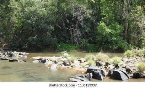 View of Shalmala River at Sahasralinga, Sirsi Taluk in the district of Uttara Kannada of Karnataka state in India.