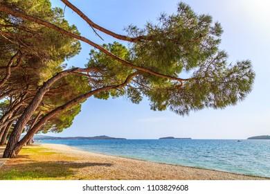 View of a shore in Croatia near Pula, Istria, Croatia