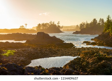 View of the shoreline at wild pacific trail in Ucluelet, Vancouver Island, BC at sunset time.