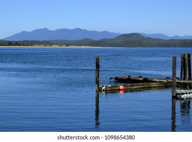 view from the shores of Tofino across the bay towards a island group in the Duffin Cove area, Vancouver Island British Columbia Canada