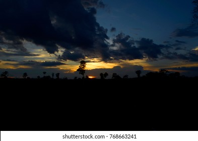 view of silhouette sunset on nature background