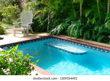 View of a small pool in a tropical setting. The long pool is surrounded by palms and other tropica plants.