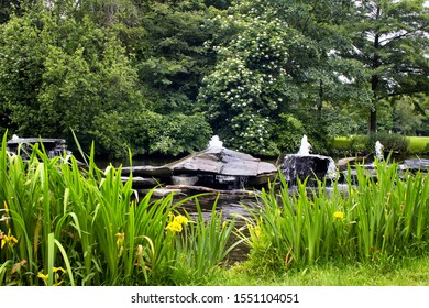 View of small water fountains coming from rocks, plants and trees at Vondelpark in Amsterdam. It is a public urban park of 47 hectares. It is a summer day.