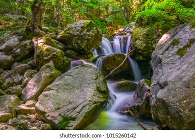 View of a small waterfall hidden in a forest in the central balkan national park in Bulgaria