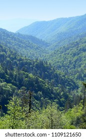View of the Smoky Mountains near Gatlingburg Tennessee